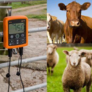 Livestock Weighing & EID