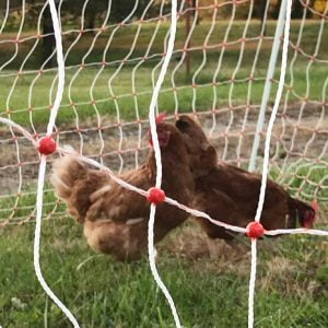 Poultry Turbo Netting