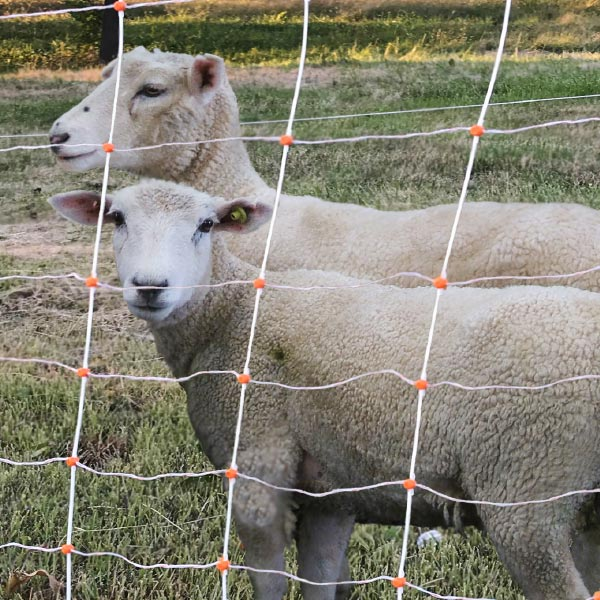 Gallagher Electronet for Sheep and Goats